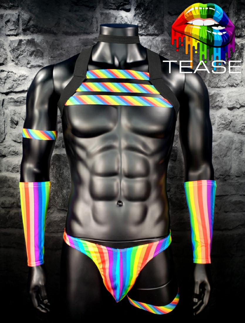 Rainbow Triple Chest Black Harness