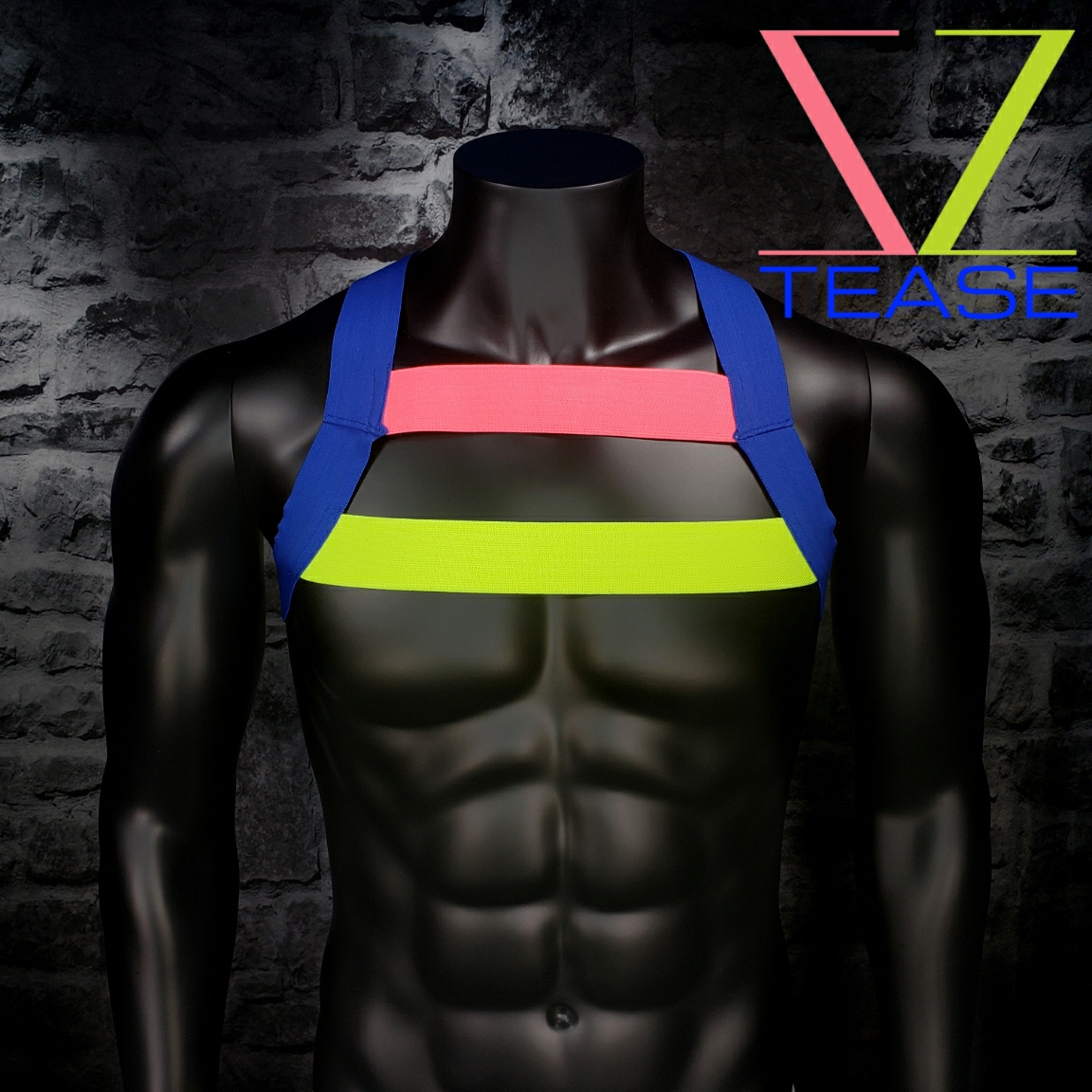 Pansexual Pride Double Strap Mens Harness