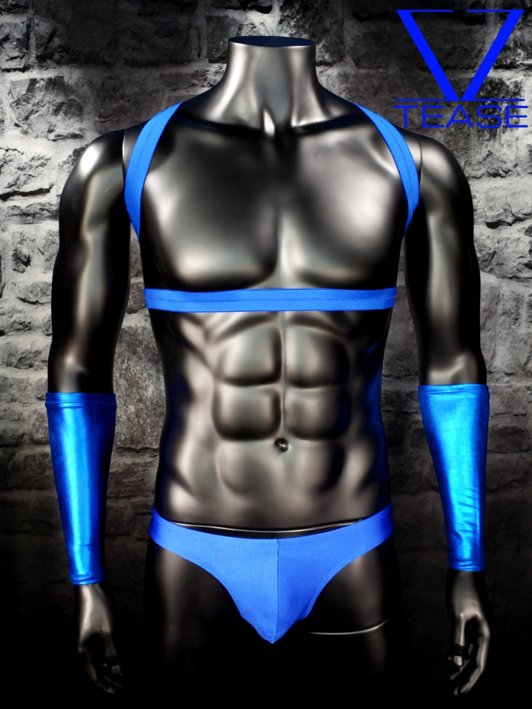 Blue Strappy Body Men's Harness