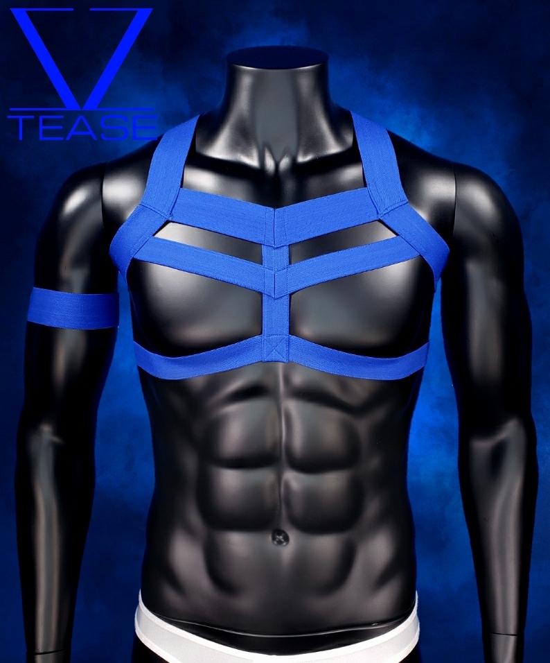 Blue Warrior Men's Harness