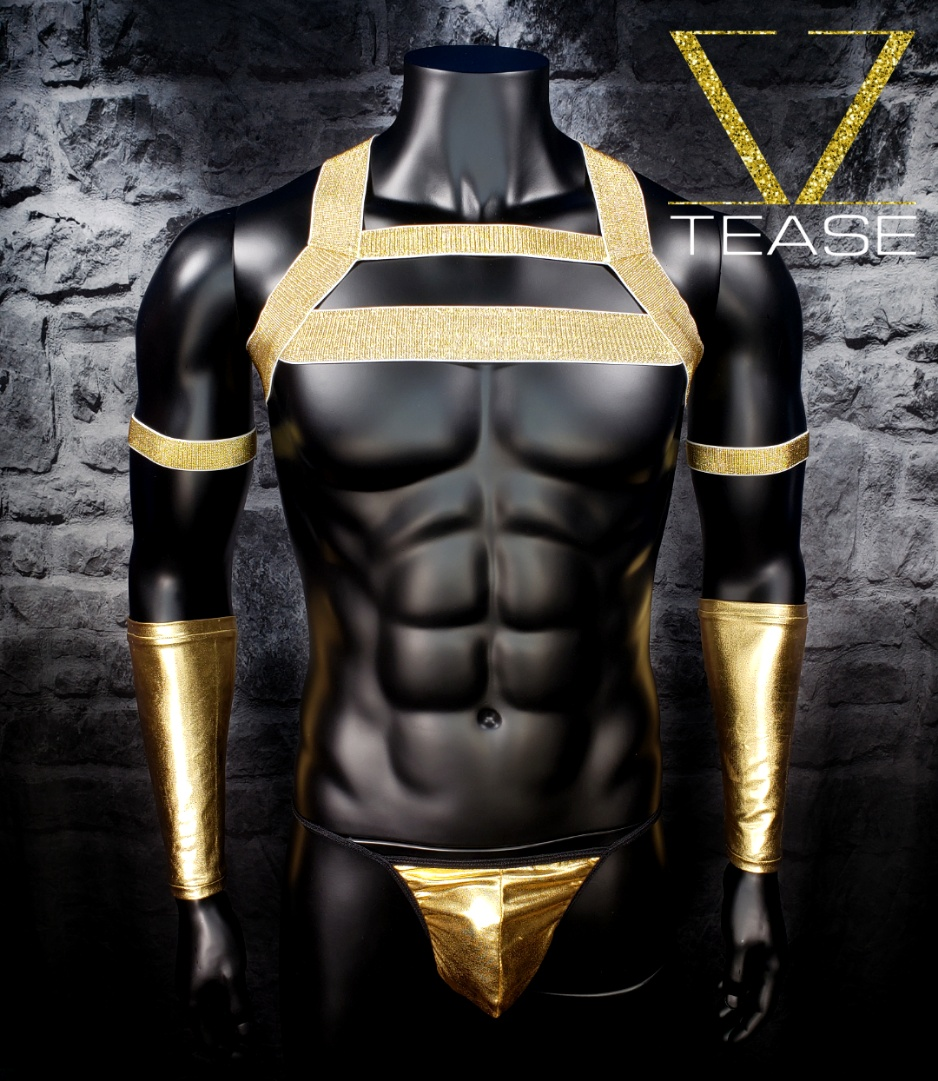 Gold Elastic Chest Harness Club Wear