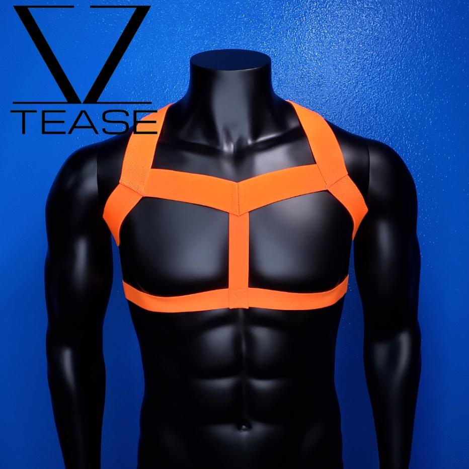 Neon Orange Champion Men's Harness