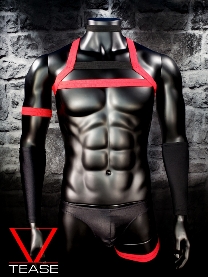 Red Black Mens Double Chest Harness