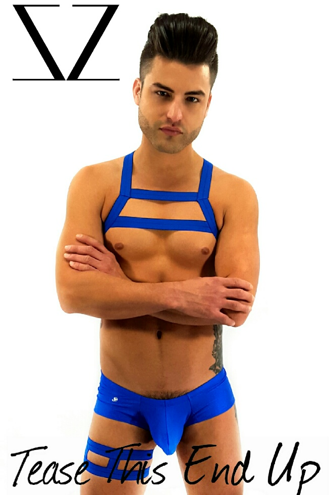Royal Blue Elastic Chest Harness Outfit