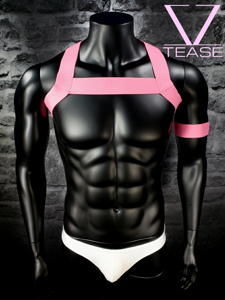 Unicorn Pink Single Chest Harness